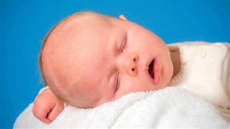 why we sleep the new science of sleep and dreams books book review why we sleep the new science of sleep and