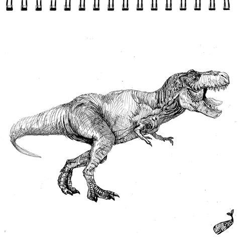 Drawing T Rex Dinosaur by T Rex Drawing Trex Dinosaur Animal Animals