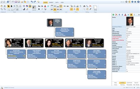 chart software organizational chart software best org chart software