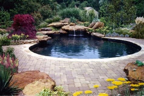 rock waterfalls for pools custom natural swimming pool in laurel maryland