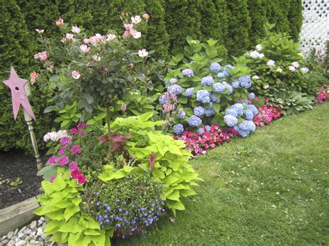 100 landscaping ideas for front yards and backyards 100 backyard planting designs best 25 backyard