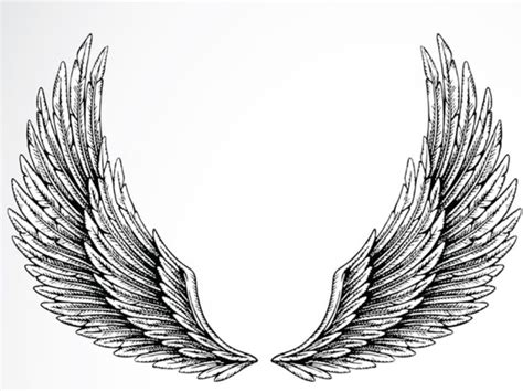 tattoo designs eagle wings best 25 eagle wing tattoos ideas on wing