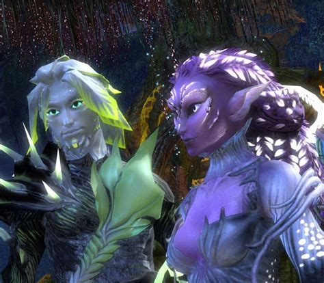 guild wars 2 hairstyles new hair styles gw2 dulfy newhairstylesformen2014 com