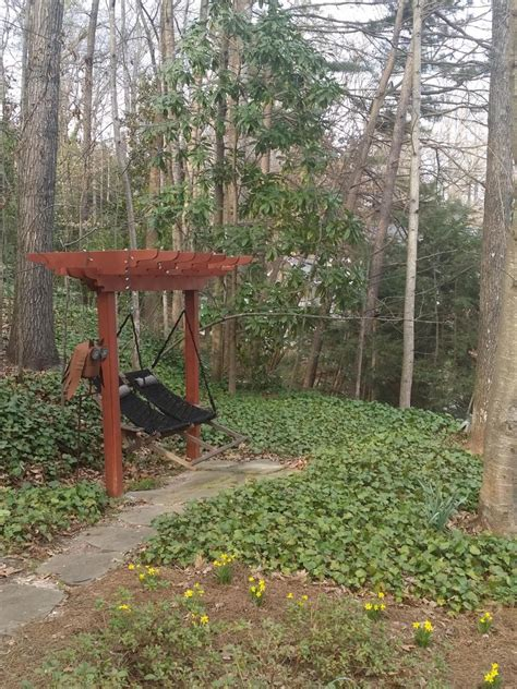 garden swing garden swing design ideas hgtv
