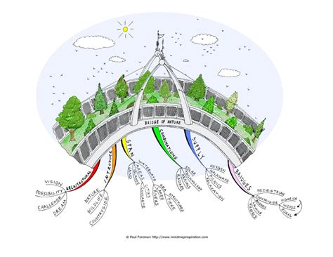 patterns in nature mind map bridge of nature mind map