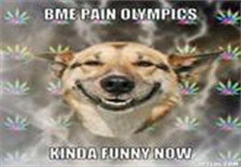 Stoner Dog Meme Generator