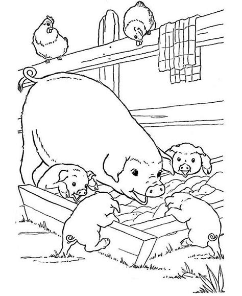 farm pig coloring page farm coloring pages for free pig and the baby gianfreda net