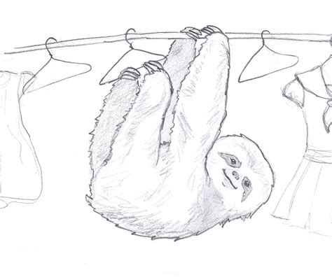 365 Sketches Drawings by Rant Eclecticism 365 Drawings Sloth 4 365