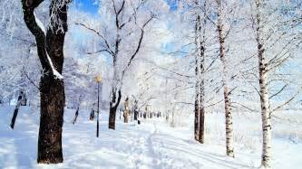 winter pictures for winter scenery random photo 35926791 fanpop