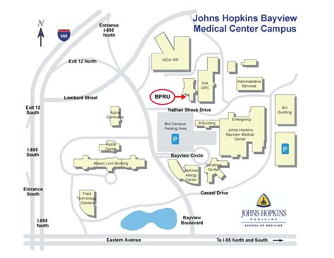 Johns Bayview Center Detox by Directions To Behavioral Pharmacology Research Unit Bpru