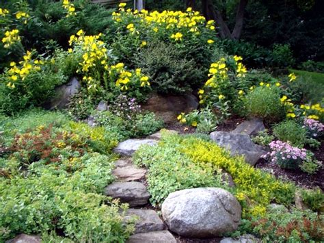 creating a rock garden creating a rock garden where plants are best placed