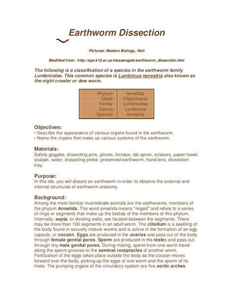 earthworm dissection report earthworm dissection