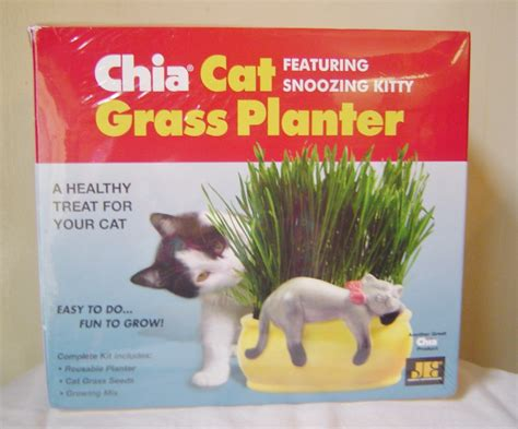 chia cat grass planter chia cat grass planter featuring snoozy planters