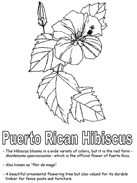 coloring page map of puerto rico puerto rico map coloring page coloring pages