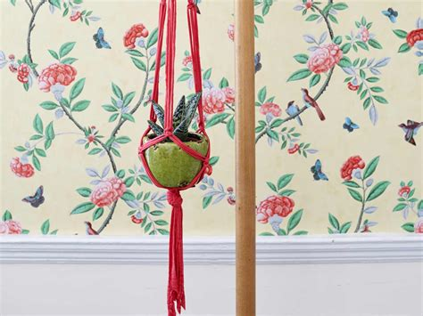 Step By Step Macrame Plant Hanger - how to make a macram 233 plant hanger saga