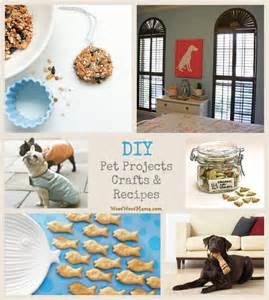 What Is Diy 7 diy pet projects crafts and recipes woof woof mama