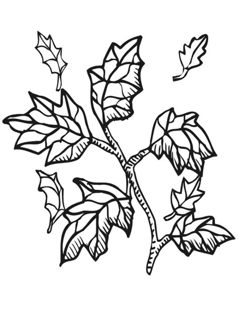 preschool fall coloring pages az coloring pages