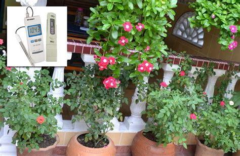 Pupuk Untuk Bunga Begonia daftar ppm tanaman bunga dan tanaman herbal