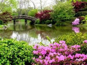 photo paysage fleuri 3