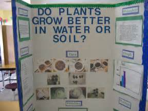 how can i do better in school do plants grow better in water or soil