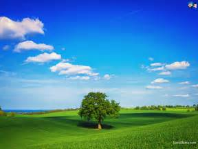 Wallpapers outdoors landscapes