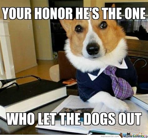 Dog On Computer Meme - 73 best images about lawyer dog on pinterest popular