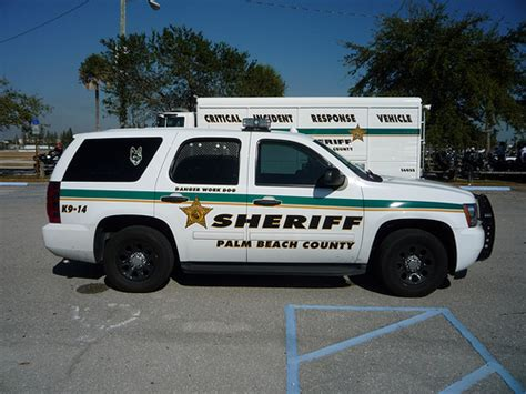 Palm County Sheriff Office by Palm County Sheriff K9 Unit A Photo On Flickriver