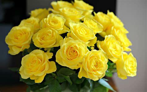 yellow vase a better bloom florist