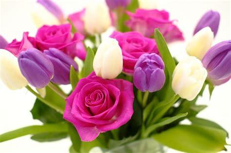 fiori festa della donna immagini festa della donna foto e frasi per gli auguri