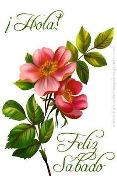 wallpaper mensajes de feliz sbado y feliz domingo con flores de el ave descansa en el aire la piedra en el suelo el pez
