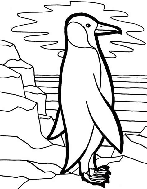 coloring pages of cute penguins cute penguin coloring page