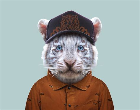 Baby animal portraits present young animals dressed like humans