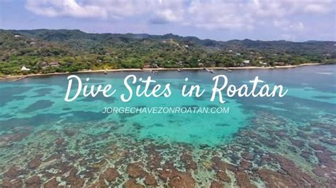 dive roatan scuba diving in roatan honduras roatan real estate