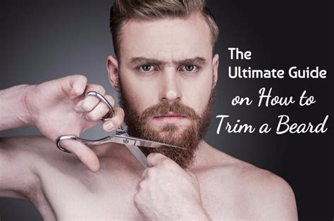 The Ultimate Guide on How to Trim a Beard