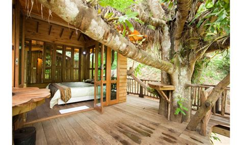 17 of the most amazing treehouses from around the world bored panda 10 of the most amazing treehouses from around the world