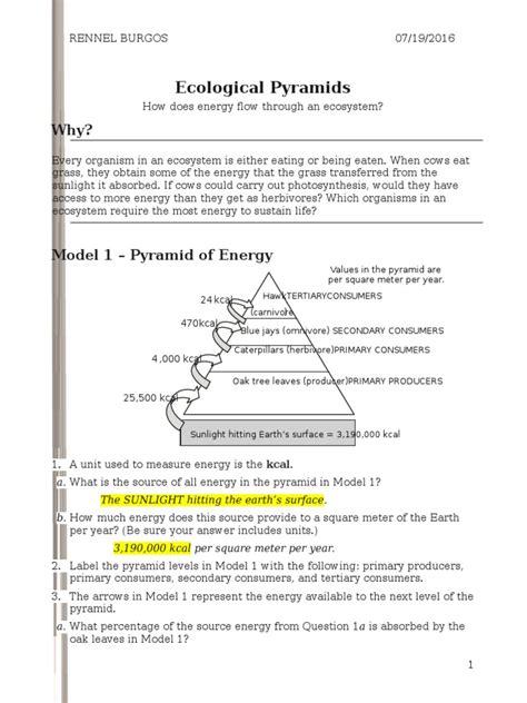 Analyzing Ecological Relationships Worksheet Answers
