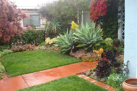 succulents kelly s imaginary garden