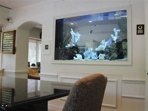 best 25 fish tank wall ideas on aquarium in