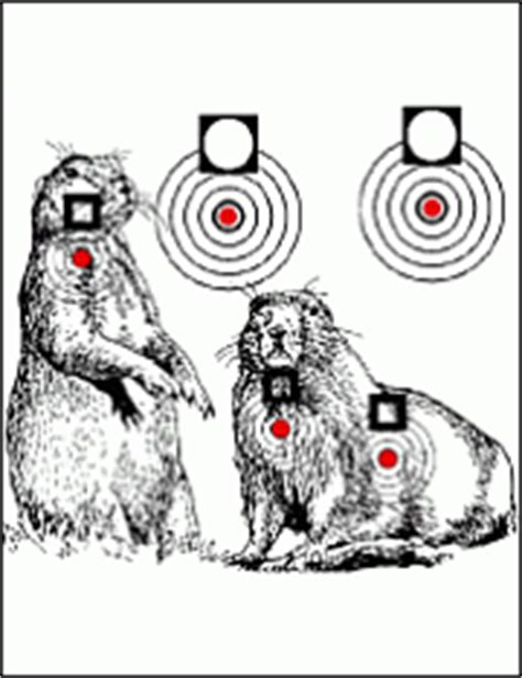 printable prairie dog targets targets for download and printing within accurateshooter com