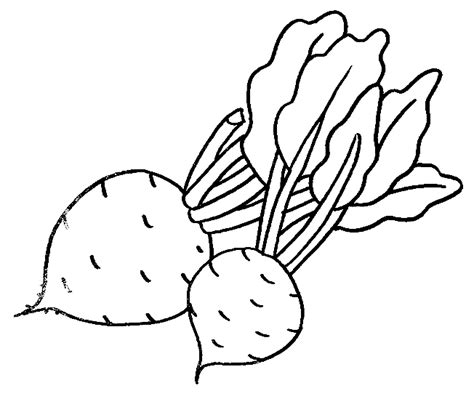 imagenes para pintar verduras alimentos para pintar imagui