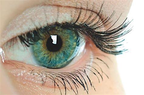 ver imagenes otoño cinco ciegos vuelven a ver gracias a tecnolog 237 a alemana