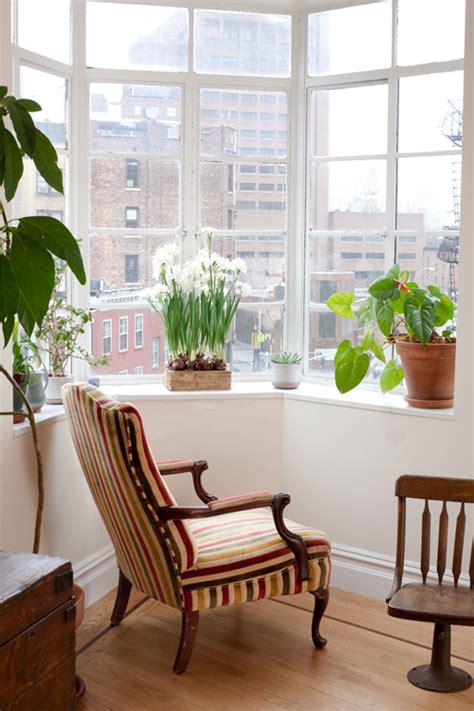 excellent ideas  display living room indoor plants