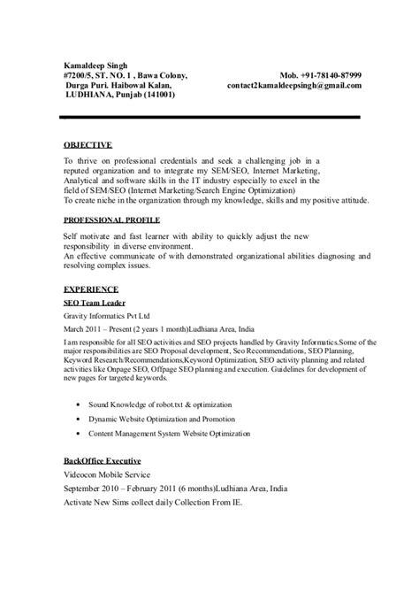 Seo Manager Resume Template   BestSellerBookDB
