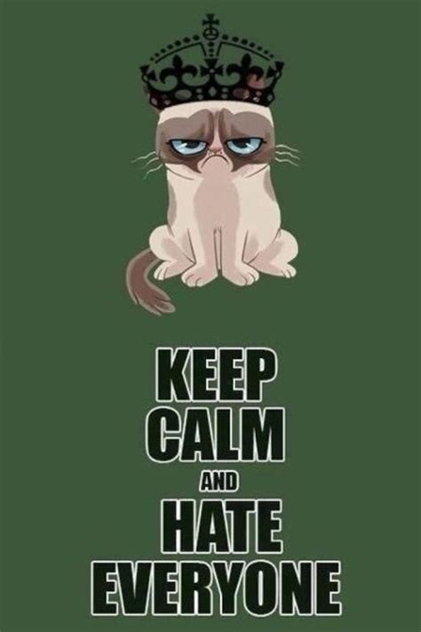 I Hate Everyone Meme - grumpy cat keep calm and hate everyone phone wallpapers