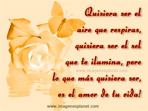 imagenes bonitas de amor con frases bonitas imagenes hermosas de amor con rosas amarillas y mariposas