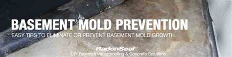 basement mold prevention simple steps to prevent basement mold radonseal