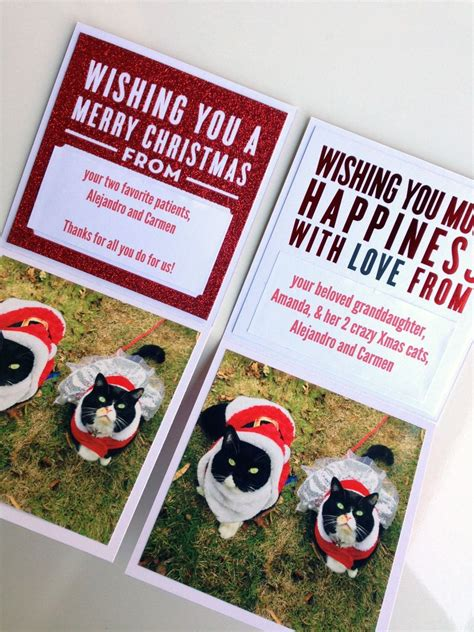 Gift Card Instant - cards in an instant kitty cat christmas cards 2014 me my big ideas
