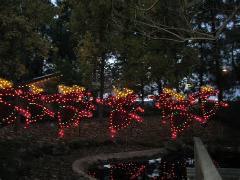 Lights Gilroy Gardens by Photo Tr Gilroy Gardens Lights Nights Of Theme Park Review