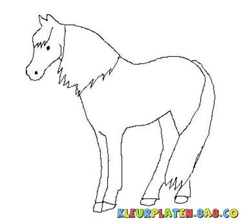 coloring pages of paint horses coloring pages paint freecoloring4u