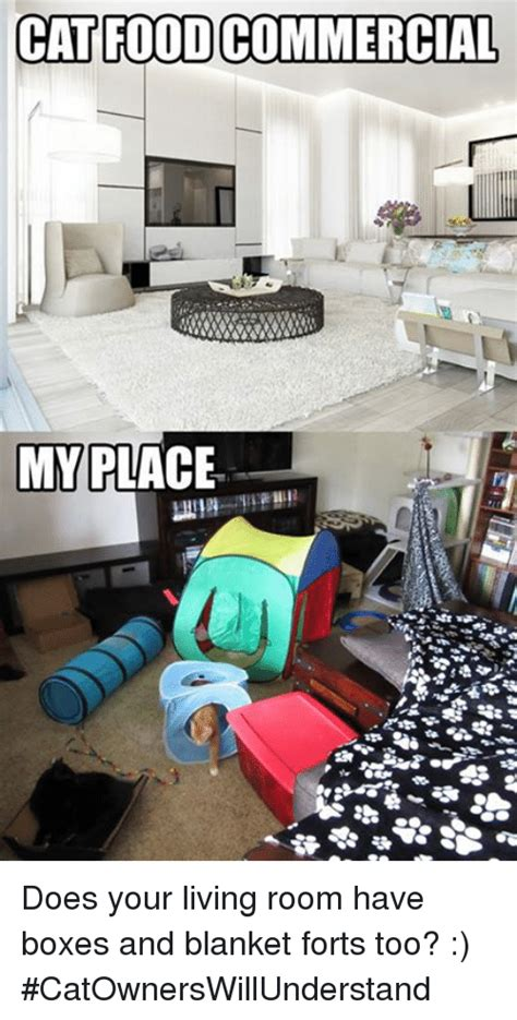 living in a box room in your lyrics catfoodcommercial my place does your living room boxes and blanket forts